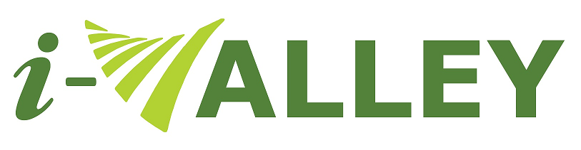 iValley Partner logo